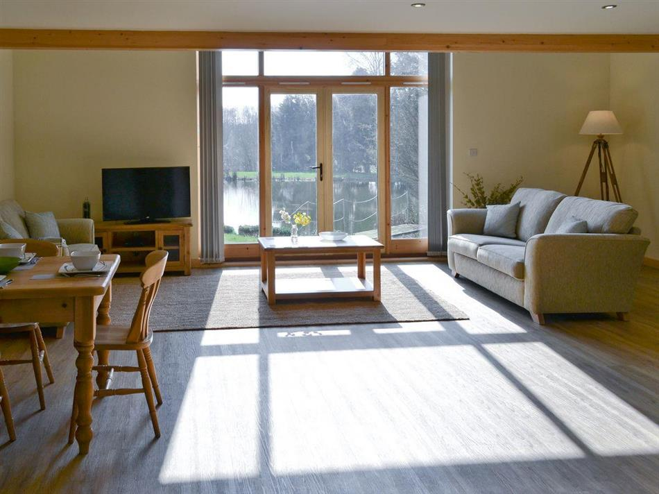 Living room in Springwater Lakes - Kingfisher Lodge, Hainford near Norwich