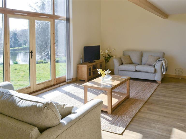 Living room in Springwater Lakes - Orchid Lodge, Hainford near Norwich